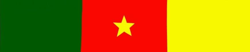 Drapeau Du Cameroun