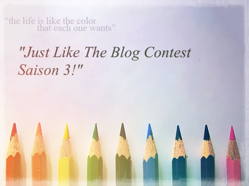 The Blog Contest