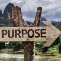 How do you choose between sense of purpose and sense of responsibility?
