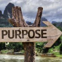 How do you choose between sense of purpose and sense of responsibility?
