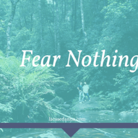 Fear Nothing, Just Do It